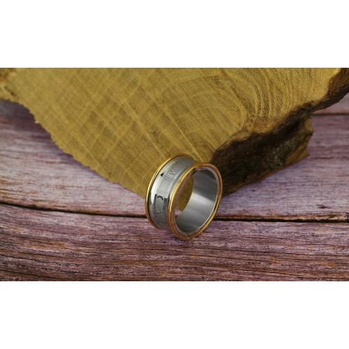 Кольцо из медицинской стали мужское Гринвич